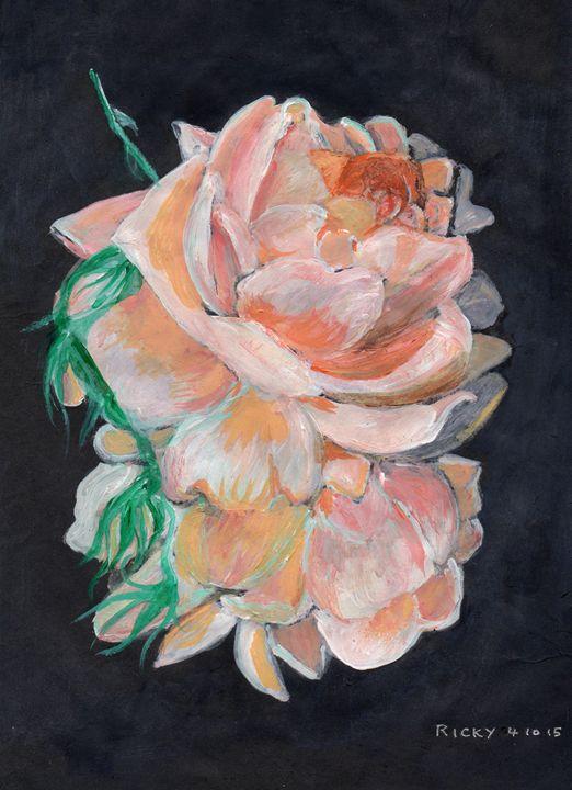 Rosedrops - Veronica Rickard