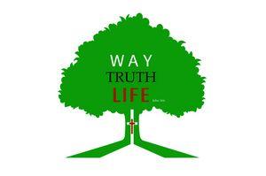 One Way: Jesus