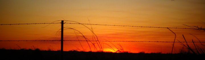 Sunset thru Barbwire fence - Recon