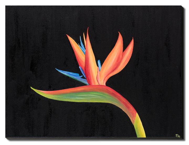 Bird of Paradise Collection - Sandra Lorant