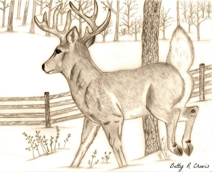 first snow - Chavis Art