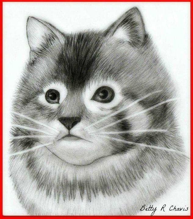 Kitten - Chavis Art