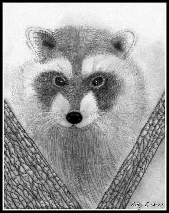 Bandit - Chavis Art