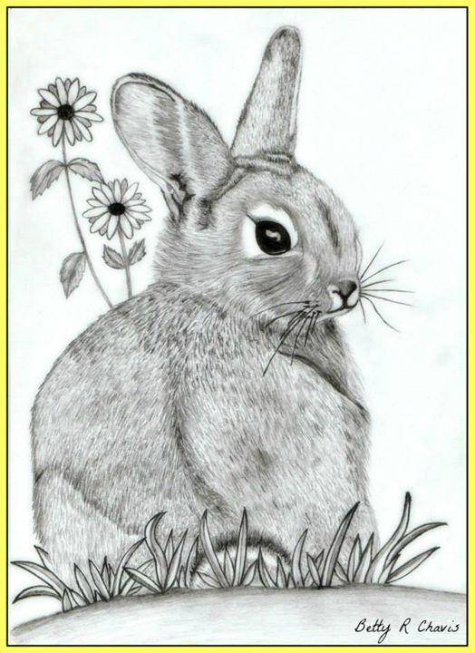 Bunny - Chavis Art