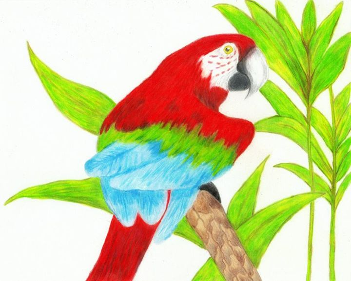 Pretty Bird - Chavis Art