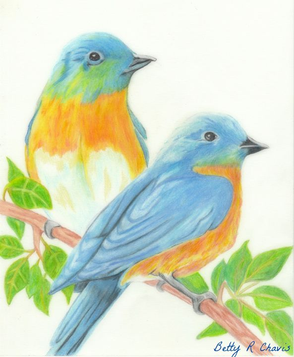 Spring Blue Birds - Chavis Art