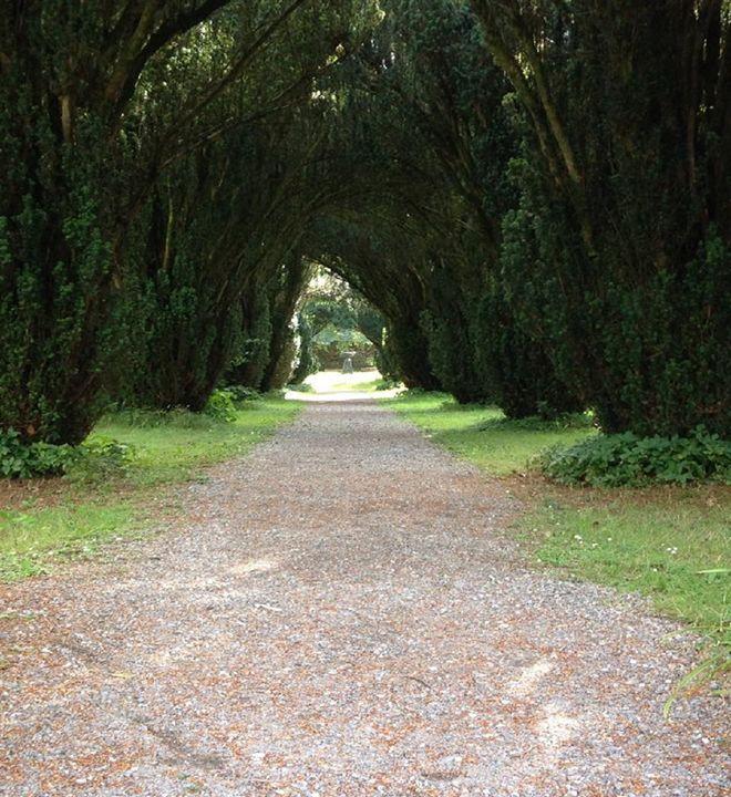 Pathway - RosCleere