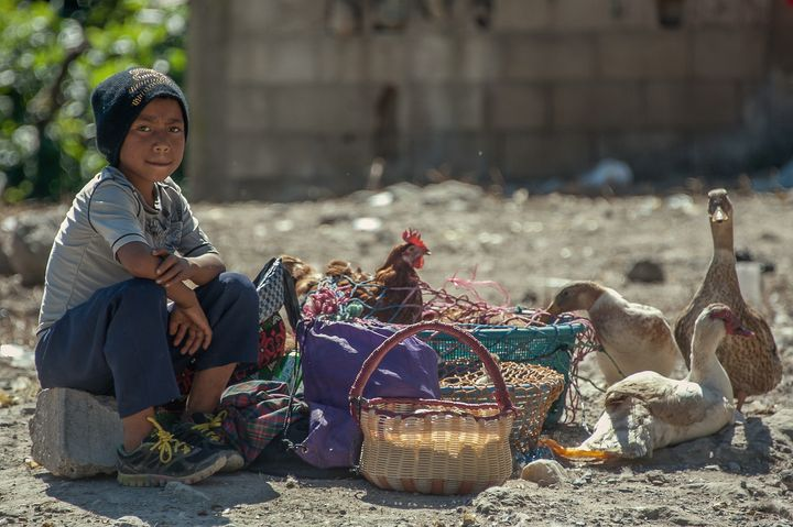 On the market - Christopher William Adach Photography