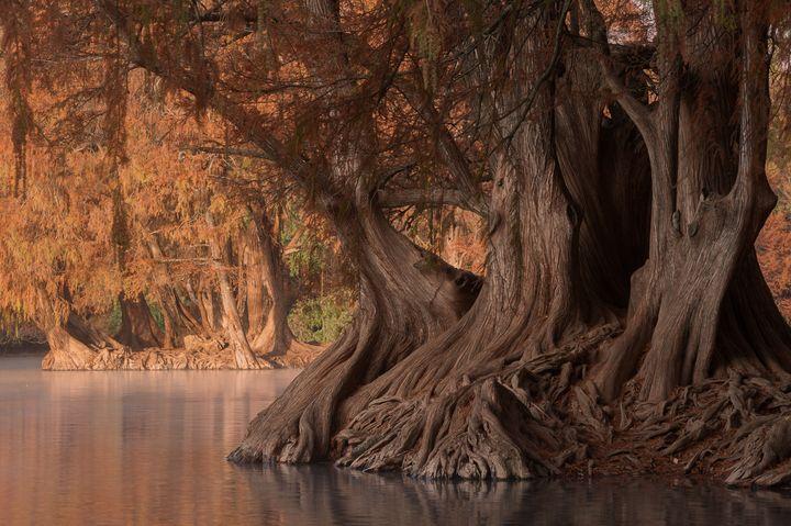 Camecuaro lake - Christopher William Adach Photography