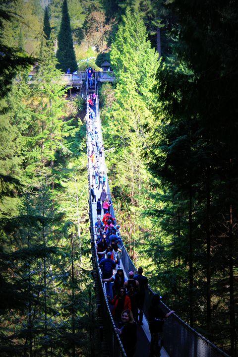 Rush hour Vancouver - FiveOz Creations