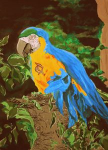 #Birdwatching - Parakeet named Keith