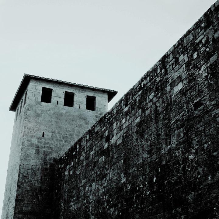 castle - Gojani Anton