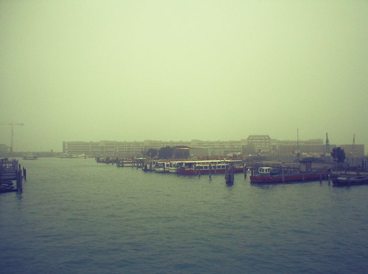 Fog - Gojani Anton