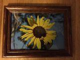 Original Hand made Frame and my Phot