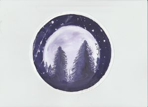 Beautiful Moon light with cedar view