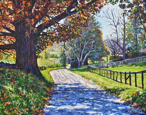 Virginia Back Country Byway - David Miller Studio