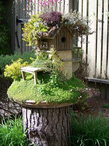 Garden Home II - Stevie-Pieces of Peace
