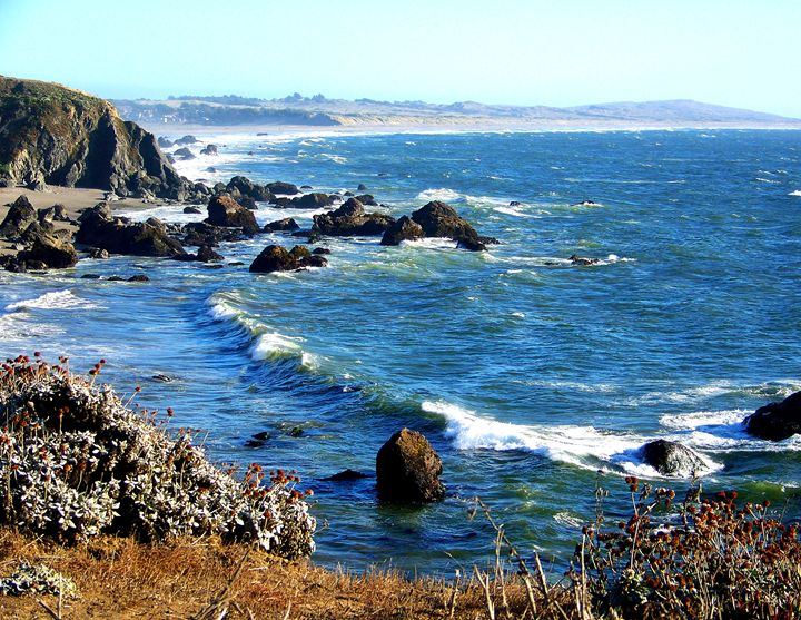 Central Coast California - Stevie-Pieces of Peace