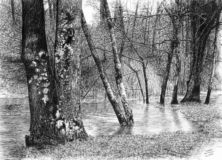 La Vayres in flood - Henry Whittell