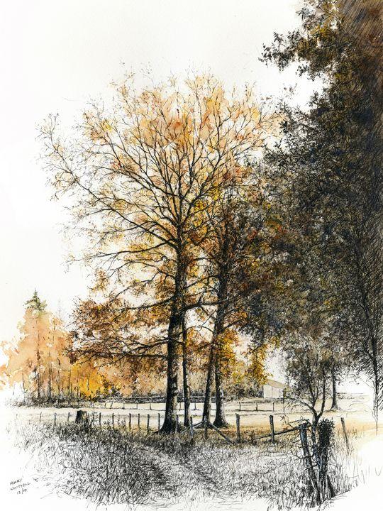 November Colour - Henry Whittell