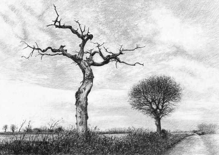Dead Tree - Henry Whittell
