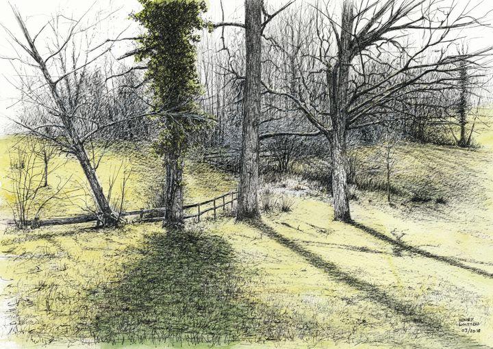 Backlit Garden - Henry Whittell