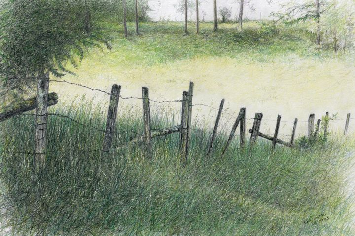 A Fence - Henry Whittell