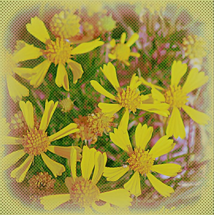 Spring Yellow Flowers - A Touch of Forever by Cassie