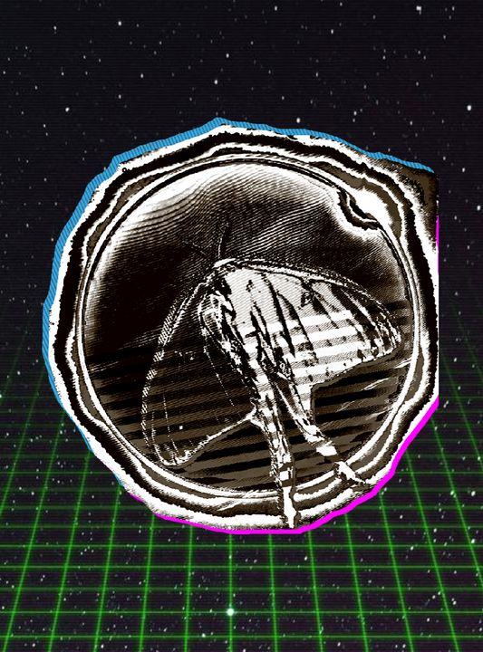 Luna Moth Solar Eclipse v3 - Hi Mesa Arts