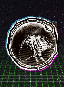 Luna Moth Solar Eclipse v3