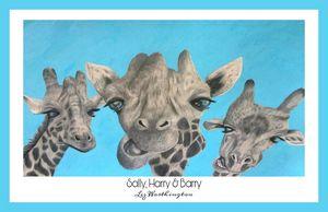 Sally, Harry & Barry - Blue border.