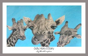 Sally, Harry & Barry - Grey border