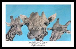 Sally, Harry & Barry - Black border.