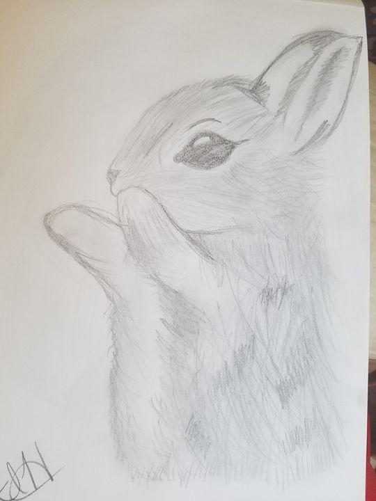 Fluffy - Artistica