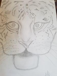 Lioness - Artistica