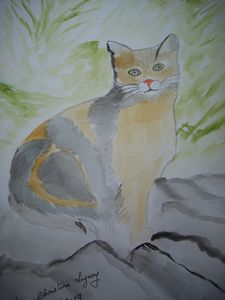 WATERCOLOUR THE CAT