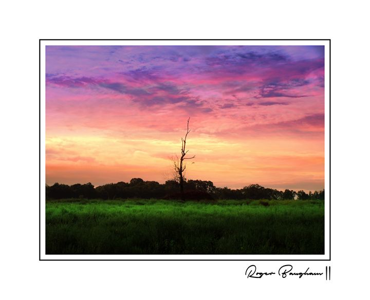 SUNSET - SIGNED - The Art Store