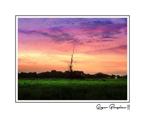 SUNSET - SIGNED