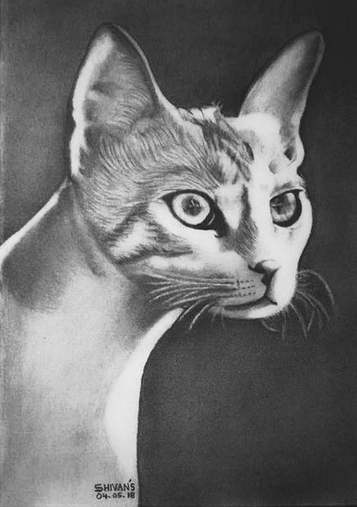 CAT - SHIVAN'S CREATIVE STUDIO