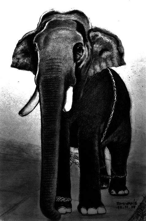 ELEPHANT - SHIVAN'S CREATIVE STUDIO