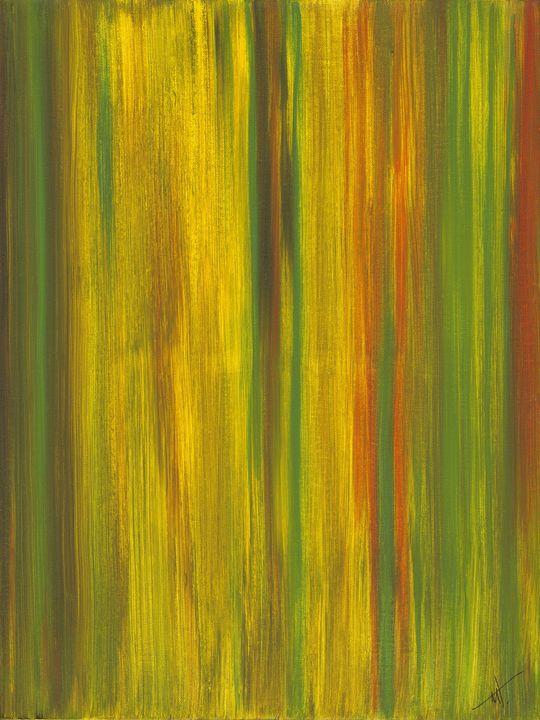 Redwoods - MT Gallery