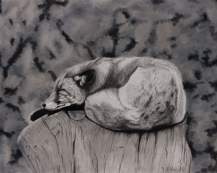 Sunday Afternoon Nap - Fine Art by Rebecca Prow