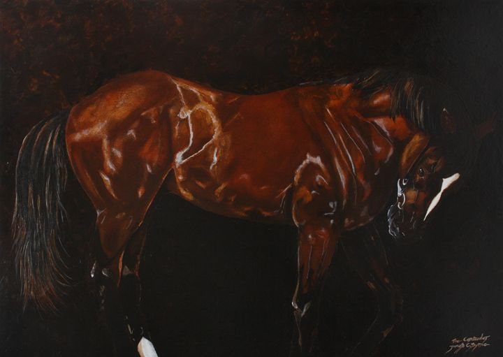 The Contender - James C Byrne Equine Art