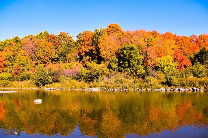 Autumn Reflections - Elisabeth Stilling
