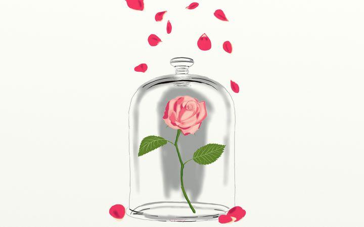 Rose petals - Yellow Cottage Art - Ronni Dewey