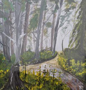 Misty Path in Woods