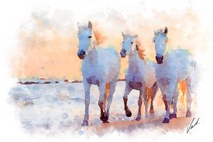 Watercolor Horses by Vart