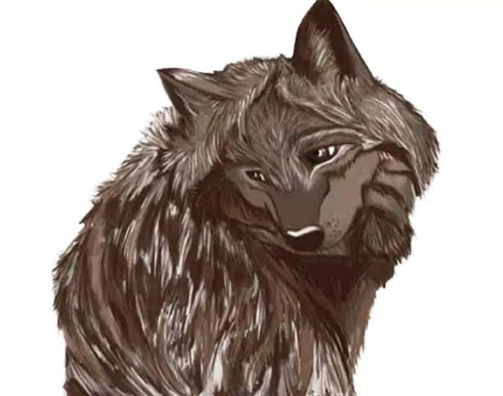 Wolf - BlueAuburn