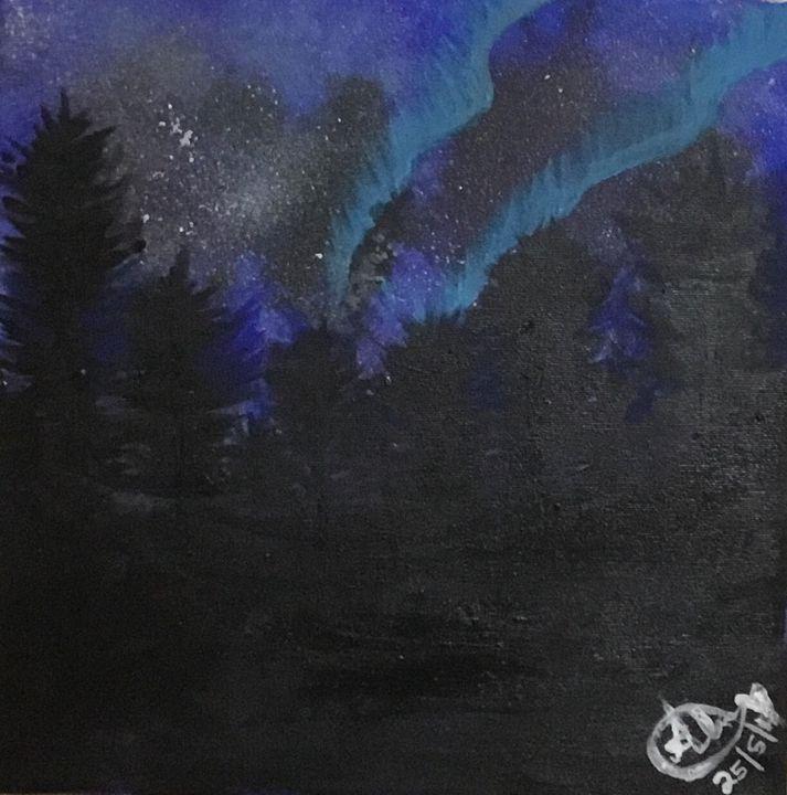 Northern lights - Aleena  John