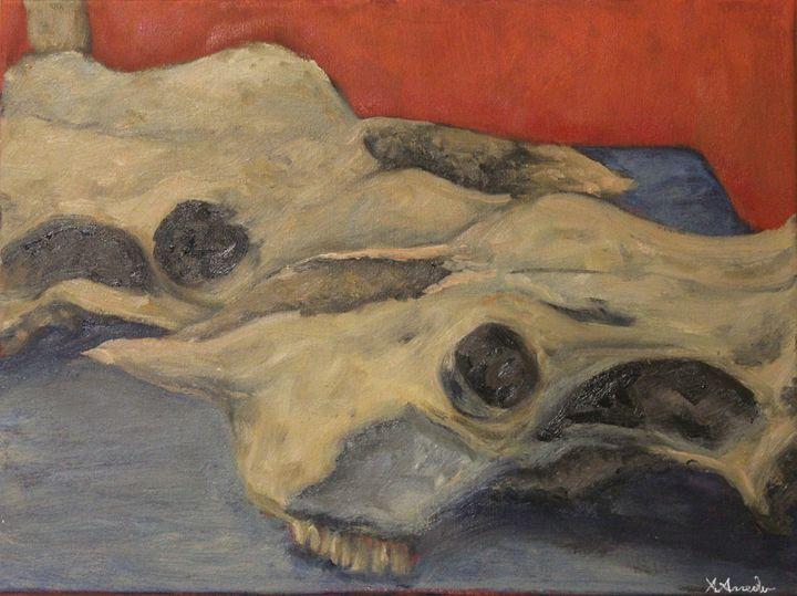 Cow skulls - XArreola
